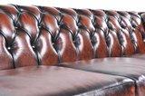 Auténtic Chesterfield Sofá | 6 plazas | Cuero | Marrón Gastado | 12 años de garantía_